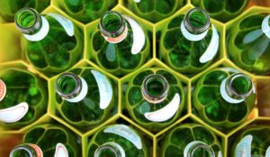 Green glass bottles organized in hexagon holders